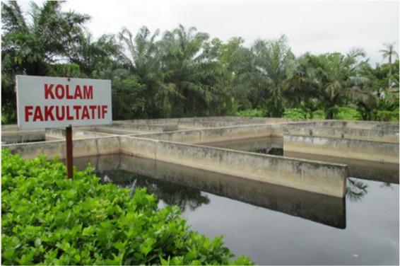 Penyusunan Rencana Induk dan DED Sistem Pengelolaan Air Limbah Domestik Kabupaten Kebumen